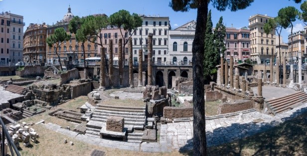 Roman-theatre-2 | TACO 2020 Conference Rome
